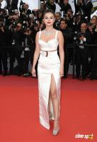 Cannes Film Festival Red Carpet (11)