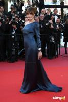 Cannes Film Festival Red Carpet (17)