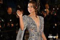 Cannes Film Festival Red Carpet (18)