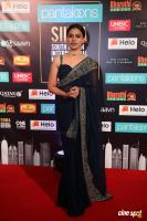 Anusree at SIIMA 2019 (1)