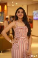 Andrea Jeremiah at Taramani Pre Release Event (13)