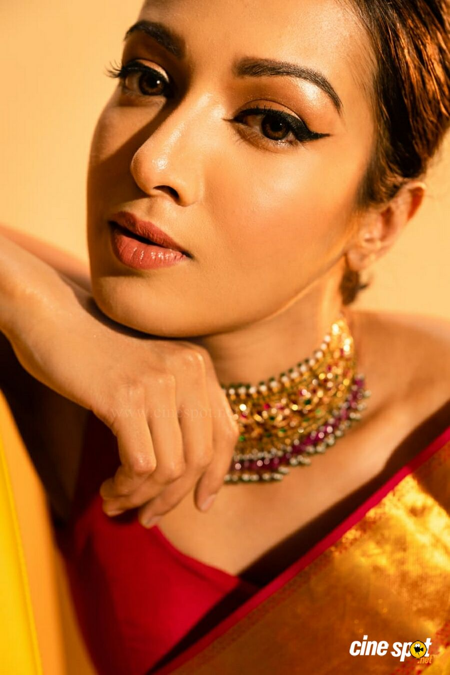 Catherine Tresa Latest PhotoShoot (6)
