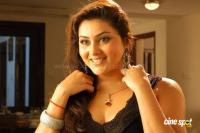 Namitha in Simha Movie  Spicy Hot Sexy Photos (11)