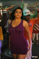 Namitha in Simha Movie  Spicy Hot Sexy Photos (22)