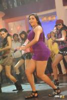 Namitha in Simha Movie  Spicy Hot Sexy Photos (27)