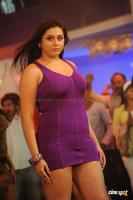 Namitha in Simha Movie  Spicy Hot Sexy Photos (33)