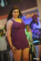 Namitha in Simha Movie  Spicy Hot Sexy Photos (37)
