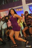 Namitha in Simha Movie  Spicy Hot Sexy Photos (44)
