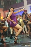 Namitha in Simha Movie  Spicy Hot Sexy Photos (45)