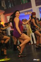 Namitha in Simha Movie  Spicy Hot Sexy Photos (46)
