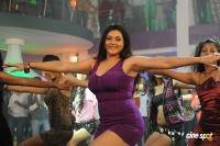 Namitha in Simha Movie  Spicy Hot Sexy Photos (47)