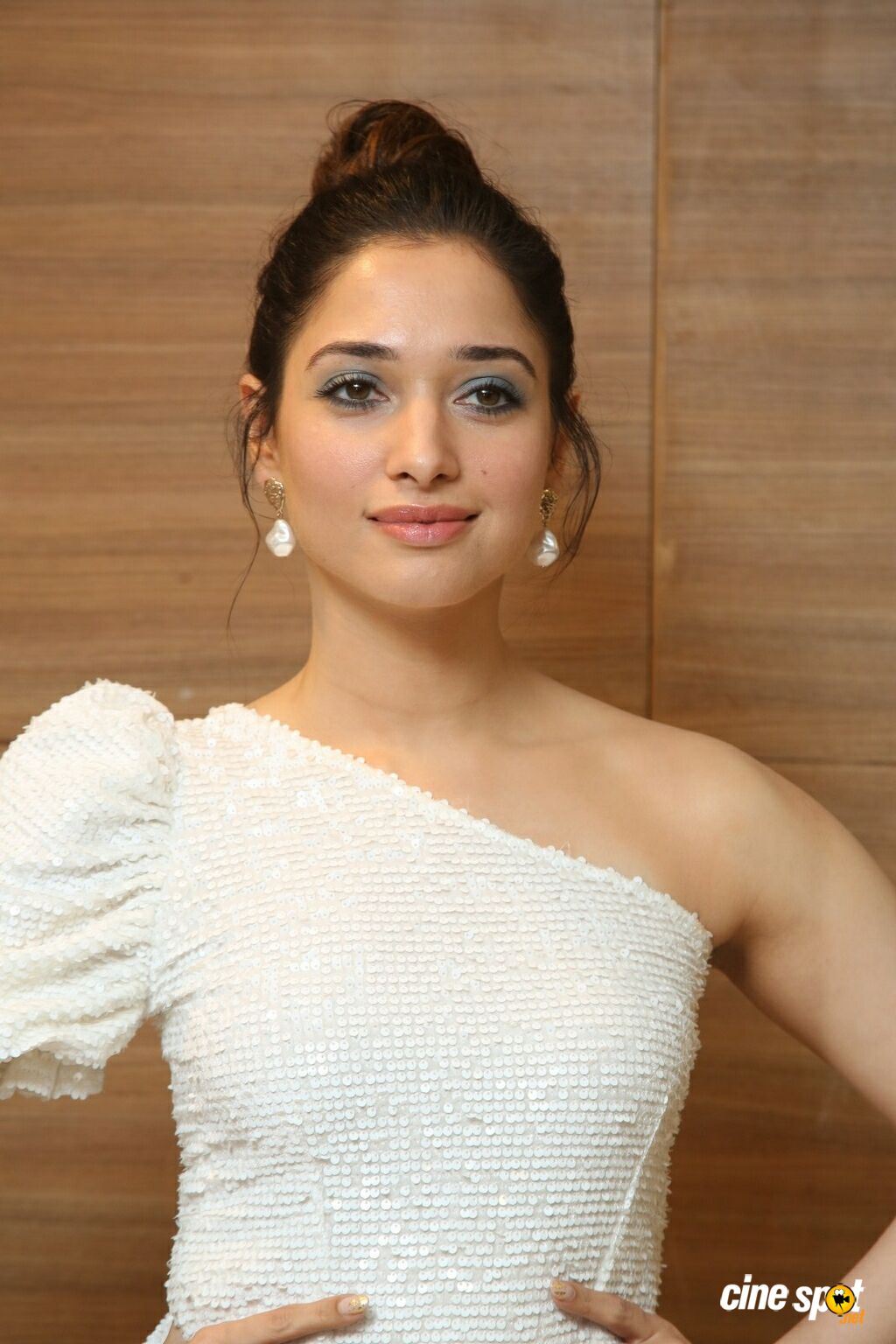 Tamannaah Bhatia at Action Movie Pre Release Event (14)