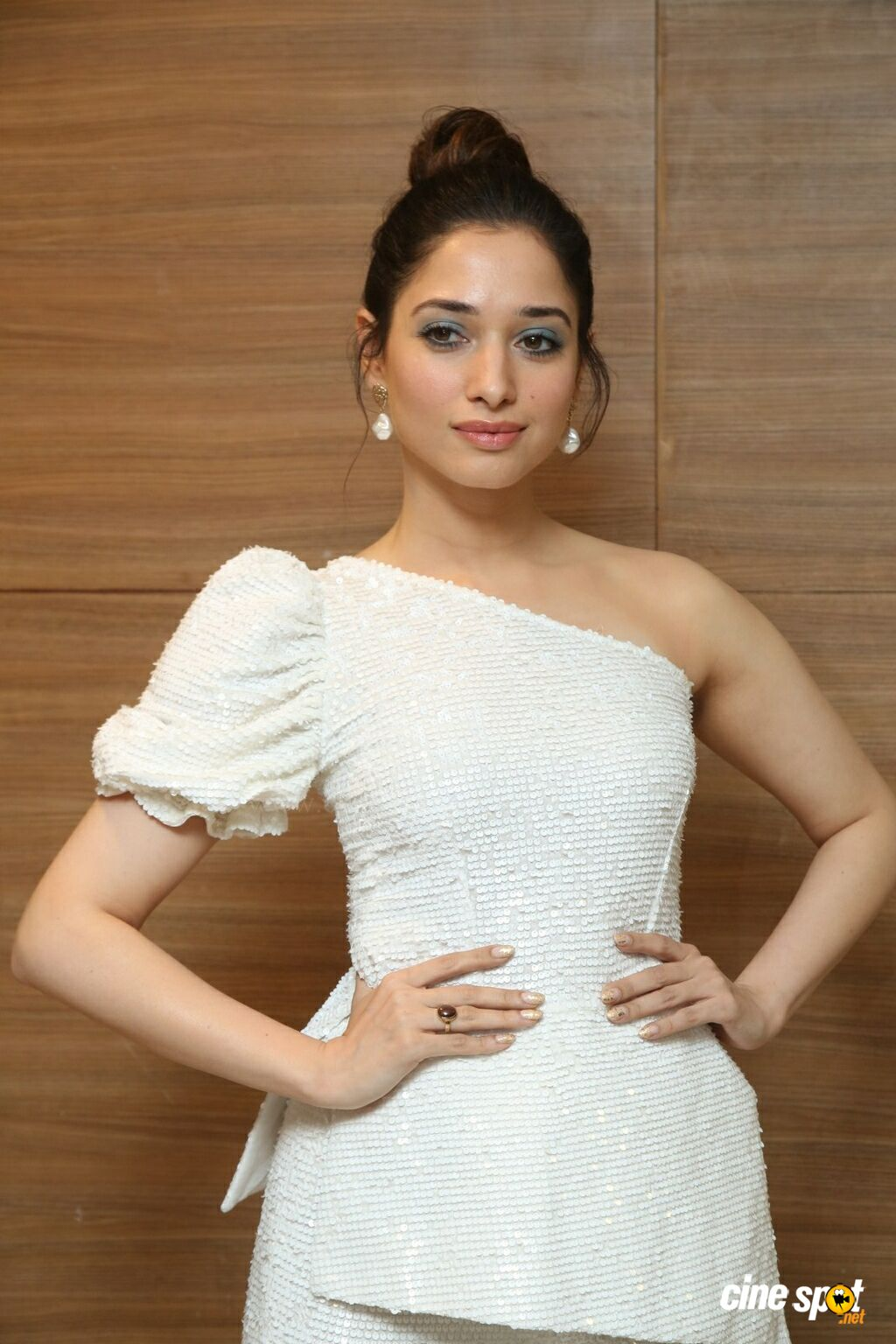 Tamannaah Bhatia at Action Movie Pre Release Event (17)