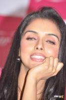 Asin south actress photos,stills (38)