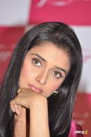 Asin south actress photos,stills (39)