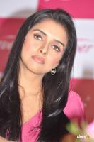 Asin south actress photos,stills (40)