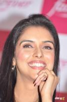 Asin south actress photos,stills (41)