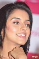 Asin south actress photos,stills (42)