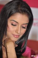 Asin south actress photos,stills (43)