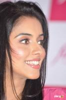 Asin south actress photos,stills (44)
