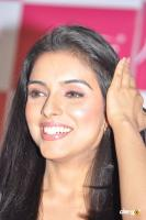 Asin south actress photos,stills (45)