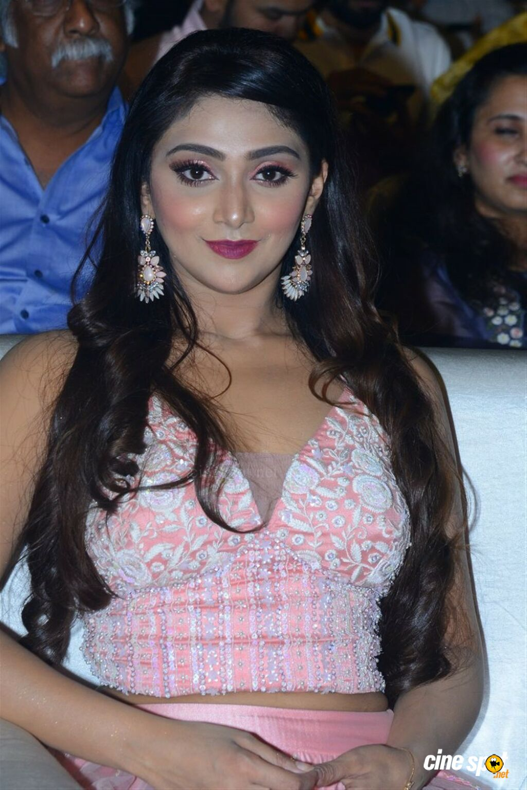 Natasha Doshi at Entha Manchivaadavuraa Pre Release Event (9)