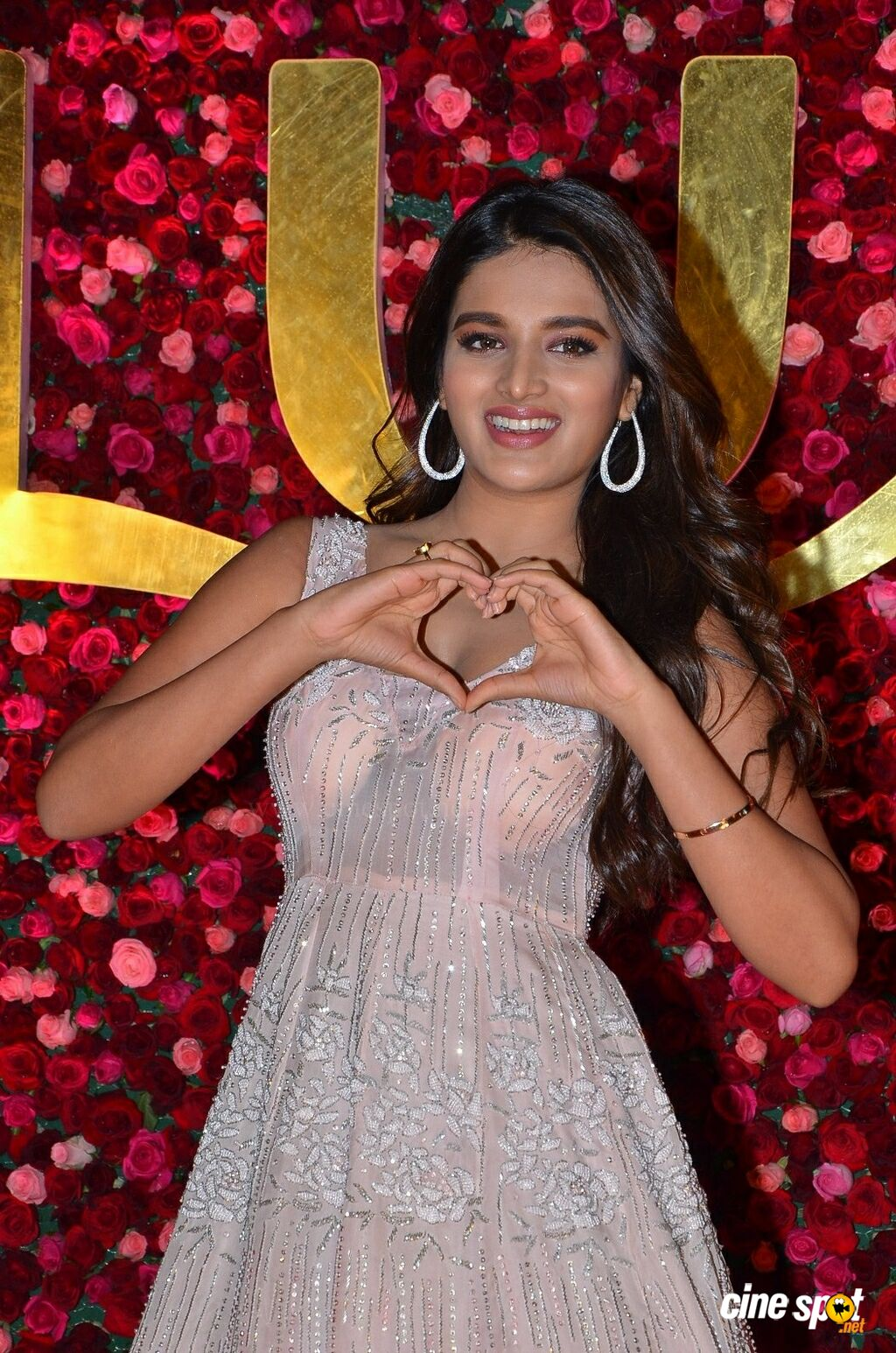 Nidhhi Agerwal at Zee Telugu Cine Awards 2020 Red Carpet (12)