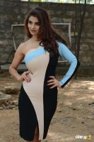 Anveshi Jain at Commitment Movie Title Launch (10)