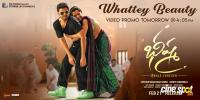 Bheeshma Movie Whattey Beauty Song Promo Poster