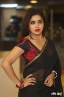 Karunya Chowdary at 3 Monkeys Pre Release Event (26)