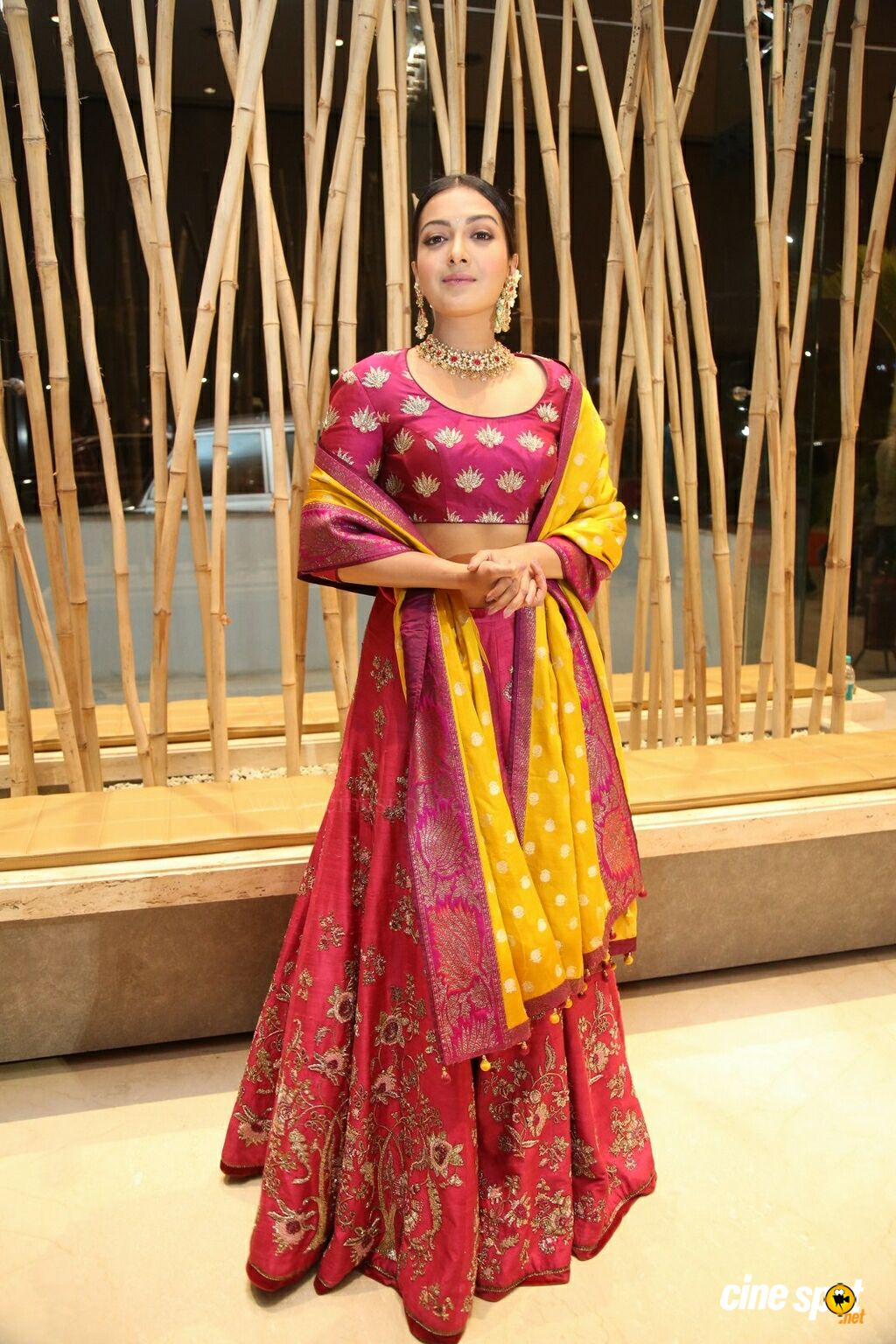 Catherine Tresa at World Famous Lover Pre Release Event (15)