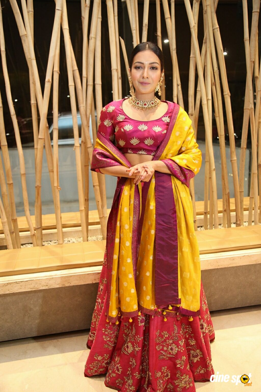Catherine Tresa at World Famous Lover Pre Release Event (2)