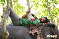 Aranya Movie Stills (1)