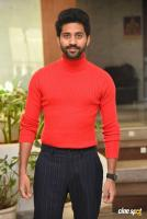 Viswant Duddumpudi at O Pitta Katha Press Meet (6)