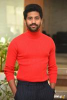 Viswant Duddumpudi at O Pitta Katha Press Meet (8)