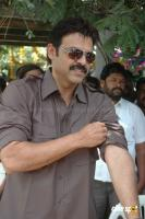 Venkatesh photos (13)