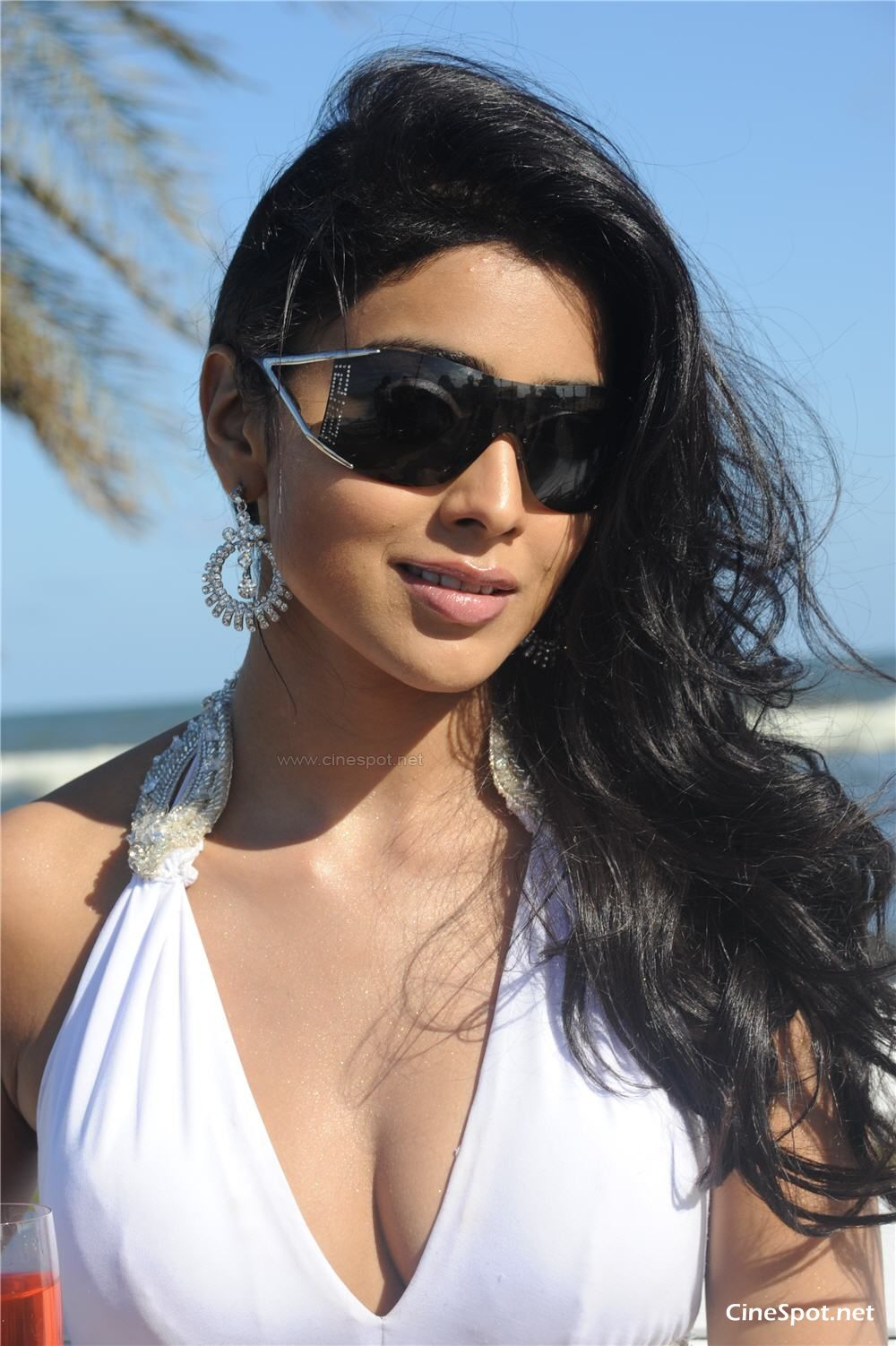 Shriya South Hot Actress Photos, Stills, Pics (10)