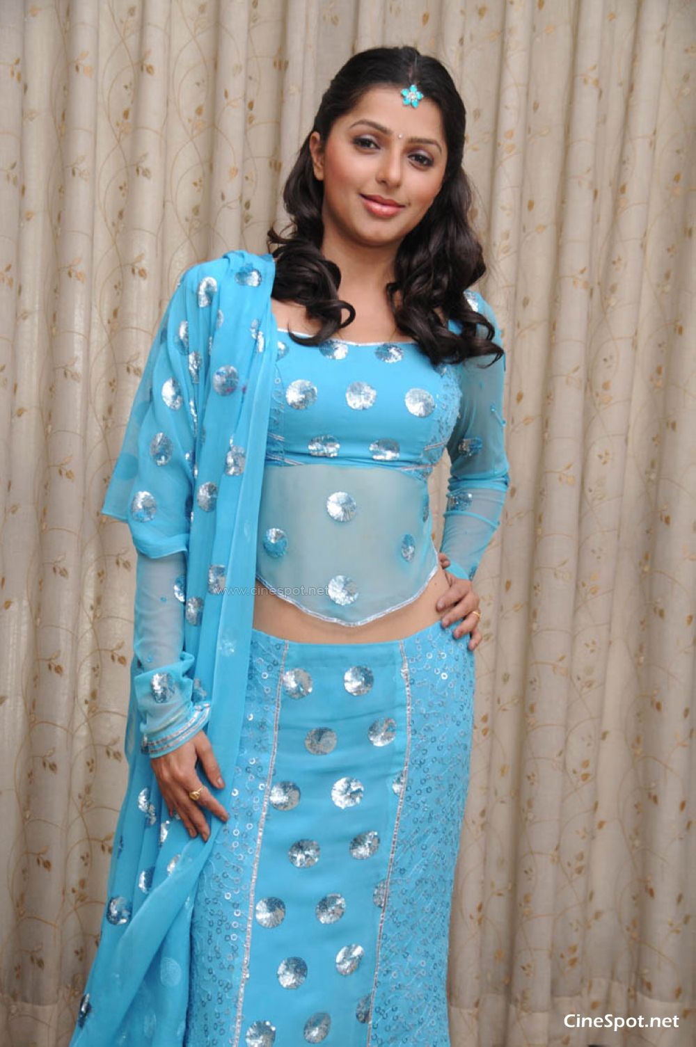 Bhoomika South Actress New Photos (10)