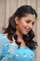 Bhoomika South Actress New Photos (17)