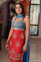 Bhoomika South Actress New Photos (22)