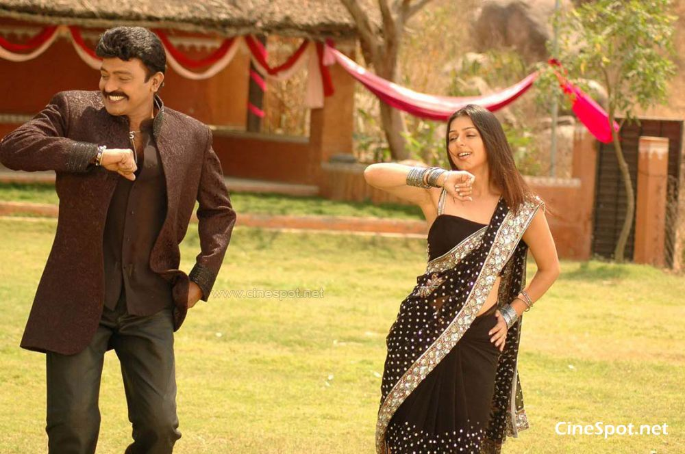 Naa Style Veru Telgu movie photos, stills (9)