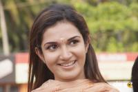 Honey rose malayalam actress photos (5)