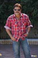 Venkatesh photos (23)