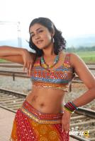 Kausha actress photos (50)