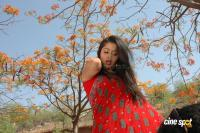 Sangeetha photos (14)