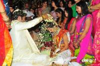 junior ntr wedding photos (4)