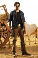 Pawan Kalyan Telugu Movie Actor Photos