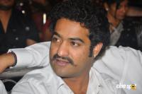 NTR Photos (10)