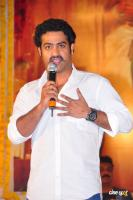 NTR Photos (19)