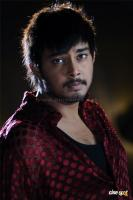Tanish Photos (11)